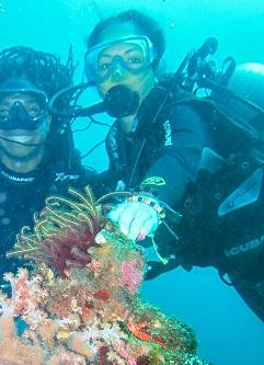Diving April 2012 -